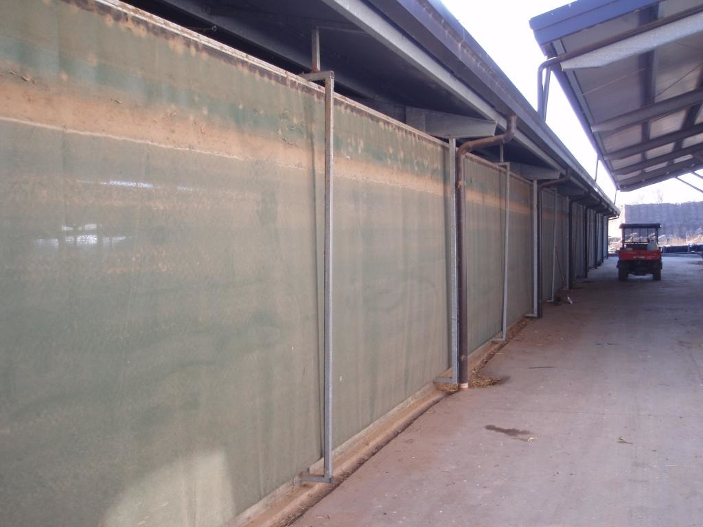 Automated Sidewalls Walls For Dairy Farms - 4/6